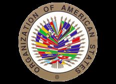 REPRESENTACIÓN UNIVERSITARIA EN LA OEA