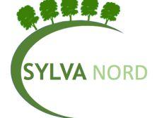 Créer des forêts urbaines