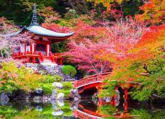 expédition au Japon