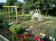 Neu Gründung sozialer Kleingarten Verein