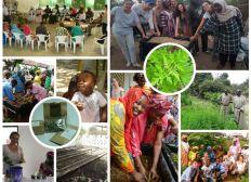 Projet MYLAA 2019 : une plante pour lutter contre le paludisme