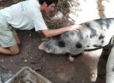 Installez un jeune agriculteur bio