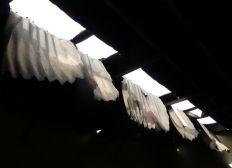 Un toit pour une école à Sinthiou-Mogo, Sénégal