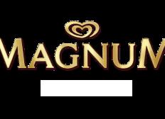Pub Magnum ESRA 2D