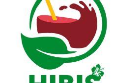 Hibiscus drink company