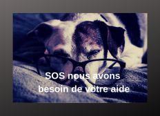 SOS nous avons besoin de votre aide
