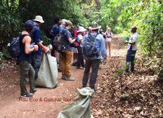 Protection de l'environnement et Agroforesterie