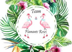 Finland Trophy-Team Flamants Roses