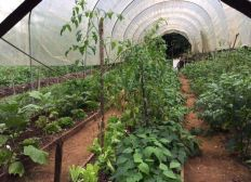 Agriculture equitable