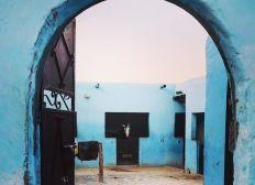 L' écurie d'or - Pour des chevaux heureux au Maroc