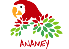 projet anamey