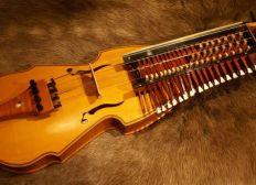 Eine Harpa für einen Musikus