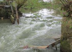 Refection du barrage du Moulin de Crécy à Mehun sur Yèvre 18500