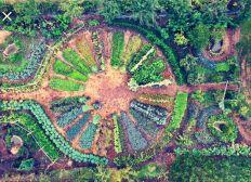 Parrainer une graine dans le jardin d'Adam et Eve