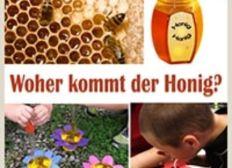 Wir wollen einen Bienen-Lehrpfad erstellen