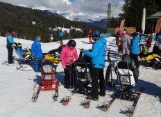 handicap ski