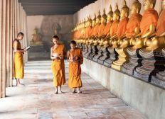 Audencia Project Cambodia