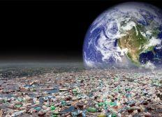 Internationales Natur- und Umweltschutz-Projekt