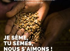 100 millions de graines pour la Terre
