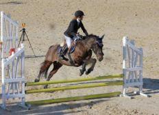 sauver le centre Equestre du Jabron