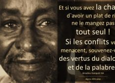 Help Amadou Hampaté Bâ Foundation !