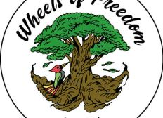 Wheelz Of Freedom - A Funky Expedition