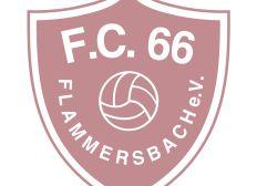 FC 66 Kunstrasen