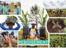 Projet d'agrandissement de la pépinière, pour la reforestation de Madagascar