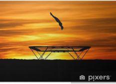 perfectionnement trampoline