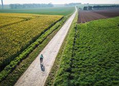 Tour des Flandres 2020
