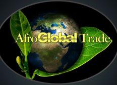AfroBrexit Business Workshop