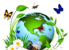 projet Maraîchage bio et naturel