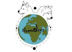Nomadogs : Pour la protection de l'élevage nomade et des steppes de Mongolie