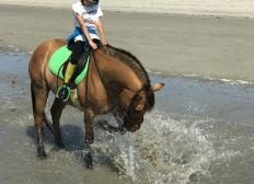 Pour avoir des bottes d'équitation