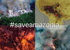 Save The Amazonia