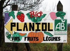 """AMAP des """"Planiol"""""""