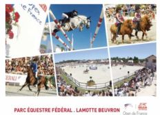 Les Championnats de France d'Equitation 2020 : l'aboutissement d'une saison !