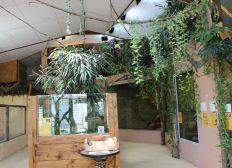 Aménagement d'une salle pédagogique à l'espace zoologique Exoticamis