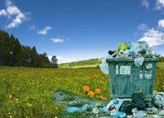 Queremosun mundo más verde ¿Nos ayudas?