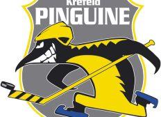 Hilft den Pinguinen