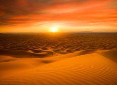 Bab El Raid 2020 - Les brunettes du désert