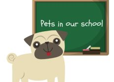 Pets in our shool