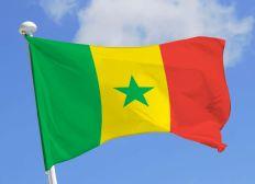 Athénée Absil - Sénégal 2020