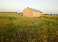 SYLLA WAGADOU / PROJET AGROPASTORALE