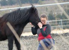 Mit Pferden helfen