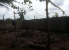 forage pour la ferme de Gbatopé - TOGO