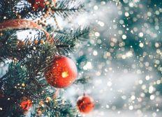Volver en navidad con mi familia!