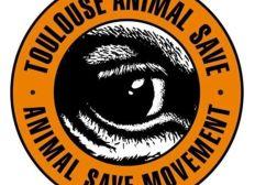 Soutien aux militants du Toulouse Animal Save