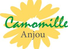 Camomille Anjou