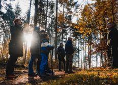 Aufforstung des Krufter Wald